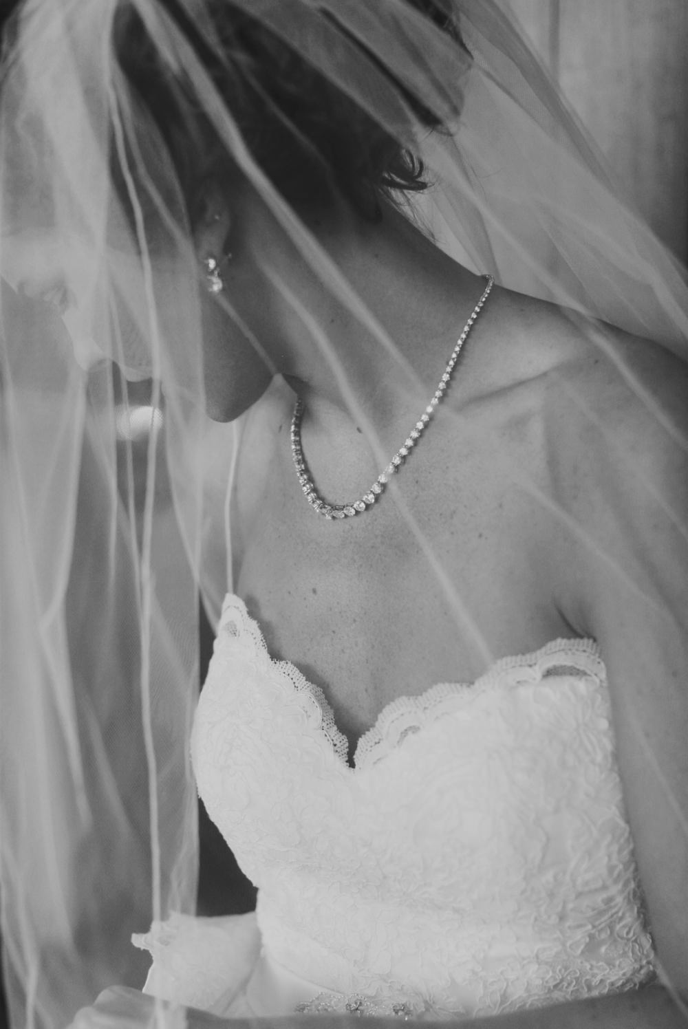 irongate-equestrian-ohio-wedding-photographer-red-gallery-photography 06